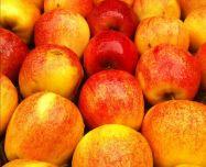 Aplicação do Ozônio na Conservação de Alimentos